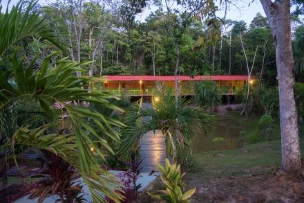 Guest House throughout the trees