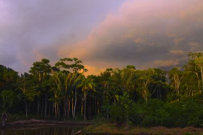 sky over amazon jungle